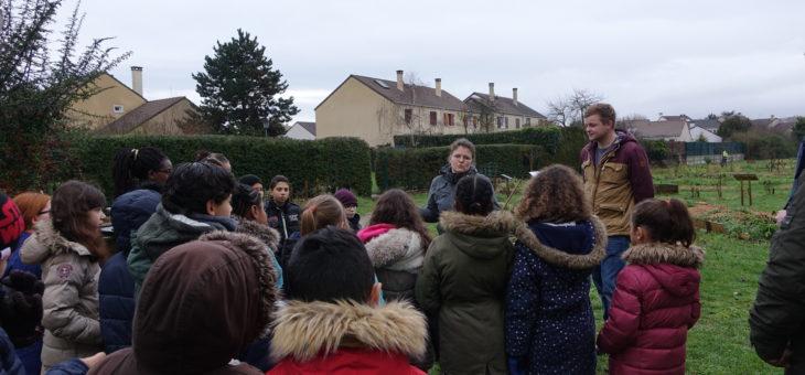 Atelier Intégr@terre – Élèves de l'école élémentaire Louis Jouvet – Achères – Préparation de semis de menthe et plantation de pommes de terre