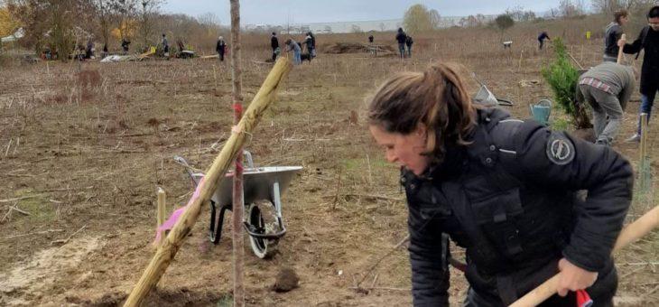 Plantation et parrainage des arbres de notre verger le 1er décembre 2018